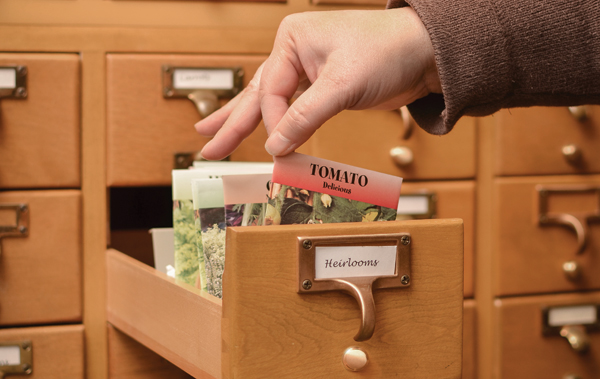 Seed packet in card catalog